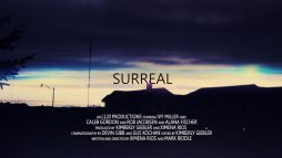 The official poster for Surreal, in which I played the lead, Mia.